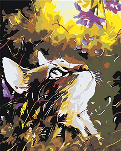 Pintar por Numeros para Pintado mano Pintura Pintado mano Bricolaje Lienzo Pinceles...
