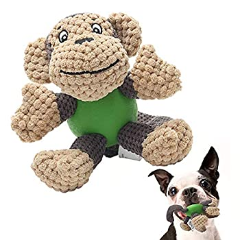 Eetoys - Jouets couinant avec un corps en caoutchouc pour chiots - Rendez votre chien heureux