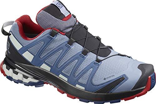 Salomon Herren Trail-Running-Schuhe, XA PRO 3D v8 GTX, Farbe: Blau (Flint Stone/Sargasso Sea/Red Dahlia), Größe: EU 41 1/3
