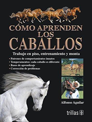 Como aprenden los caballos: trabajo en el piso, entrenamiento y monta