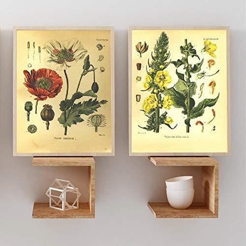 Toile Peinture Vintage Botanique Imprime Plante Affiche Mur Art Plantes MéDicinales EncyclopéDie Affiches DéCor à La Maison 70x80cmx2 Sans Cadre