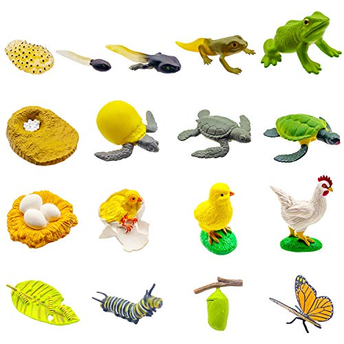 17 PCS Life Cycle Figures of Frog,Chicken,Sea Turtle, Butterfly, Early Education Animal...