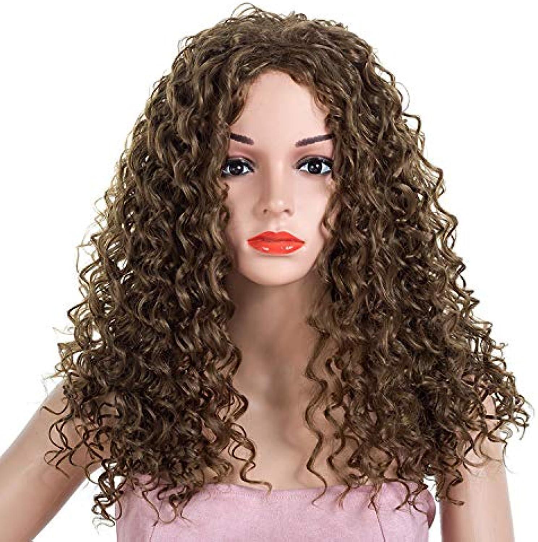 Wenjj Lockiges Haar Explosionskopf gefärbt Perücke Kopfbedeckung Perücke B07L5JJTS2