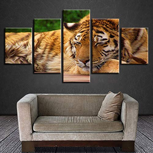 NIASGQW Cuadros Decoracion Dormitorios Modernos Impresión de Imagen Artística Digitalizada Animal Depredador | Lienzo Decorativo Para Tu Salón o Dormitorio 5 Piezas Cuadro Tigre Amarillo