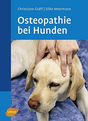 Osteopathie bei Hunden (Veterinärmedizin)