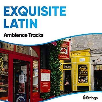 Exquisite Latin Ambience Tracks