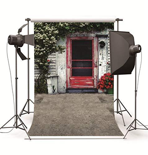 BDZC Tomar Foto Vieja casa roja Puerta del Estudio Telones Fotografía de...