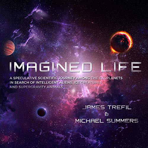 Imagined Life cover art