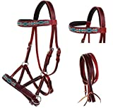English Western Horse Leather BITLESS Bridle SIDEPULL Halter REINS 77RS10MG-F