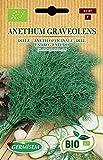 Germisem Orgánica Anethum Graveolens Semillas de Eneldo 3 g