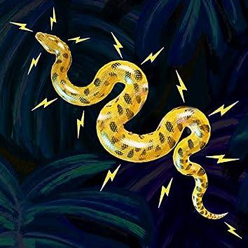 Electric Anaconda