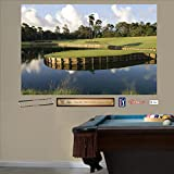 wall decals amazon - FATHEAD PGA Tour: TPC Sawgrass Hole 17 Mural-Life-Size OfficiallyLicensed Removable Graphic Wall Decal