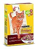 Purina Friskies Pienso para Gato Adulto Buey, Pollo y Verduras 20 x 400 g