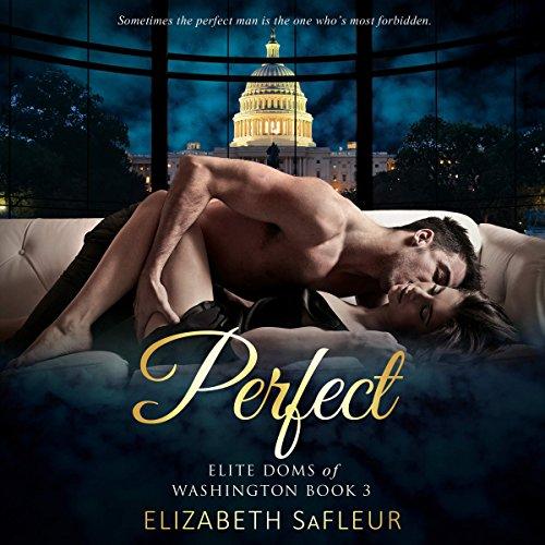 Perfect audiobook cover art