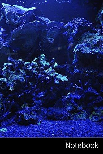 Notebook: Coral Reef, Mer, Bleu, Eau Carnet / Journal / Livre d'écriture / Calepin / Agenda / Notes - 6 x 9 pouces (15,24 x 22,86 cm), 150 pages, surface brillante.