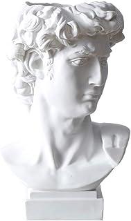 Greek David Statue Planter, Indoor Outdoor Heads Resin Succulent Pot Flower Arrangement Vase Figurine Bust Artwork Replica...
