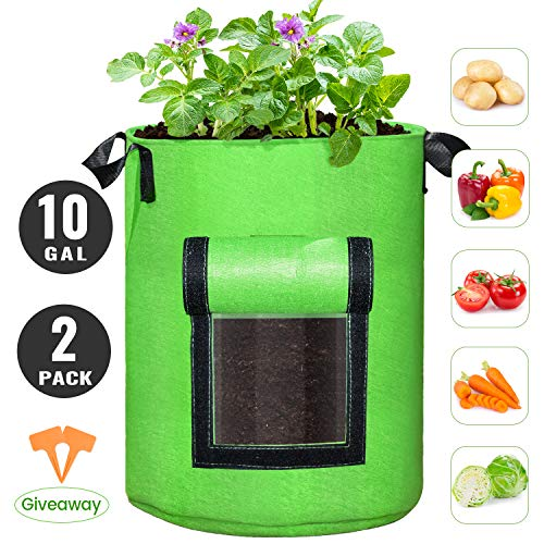 SCENGCLOS 10 Gallon Potato Grow Bags, 2 Pack, Breathable Thickened Non-Woven Fabric Plant Pots with Handles and Access Flap, Garden Planting Bags for Grow Vegetables, Tomato, Carrot, Onion, Fruits