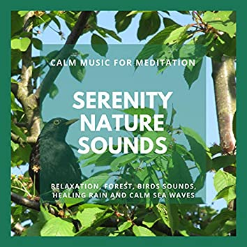 Serenity Nature Sounds - Calm Music For Meditation, Relaxation, Forest, Birds Sounds, Healing Rain And Calm Sea Waves
