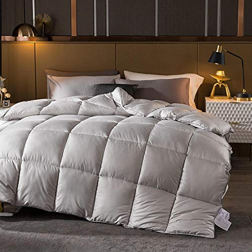 CHOU DAN Climate control duvet,Thicken and warm winter quilt double spring and autumn quilt student single four season quilt-150 * 200 2000g_Light gray