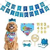 Bandana De CumpleañOs Para Perros Para NiñOs Y NiñAs - Juego De Pancartas Con Gorro De CumpleañOs Para Perros Para Perros PequeñOs Y Medianos, Gatos Y Mascotas
