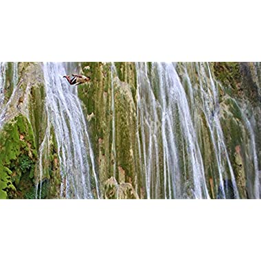 Samana Adventure with El Limon Waterfall in Dominican Republic for One - Tinggly Voucher / Gift Card in a Gift Box
