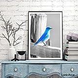 hetingyue Nórdico sin Marco pájaro Blanco y Azul Alfabeto Cartel Pintura Decorativa Tres Huevos Azul Pared Arte Lienzo Pintura decoración del hogar 50x70 cm