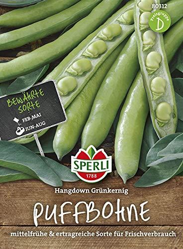 Bohnen - PuffBohnen - Hangdown Grünkernig von Sperli-Samen