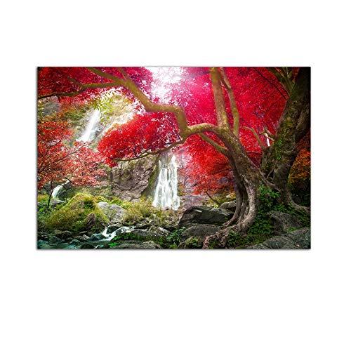 Startonight Bild auf Glas - Wasserfall im Rotwald - Abstrakte Modernes Acrylglasbild - Deko Glas 60 x 90 cm
