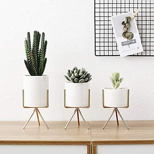 Maceta con marco de hierro, maceta de cactus geométrico, maceta de cerámica con soporte de metal, jarrón de flores con marco de hierro nórdico, decoración de oficina y hogar, blanco, S