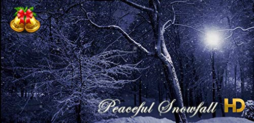 Peaceful Snowfall HD - 17