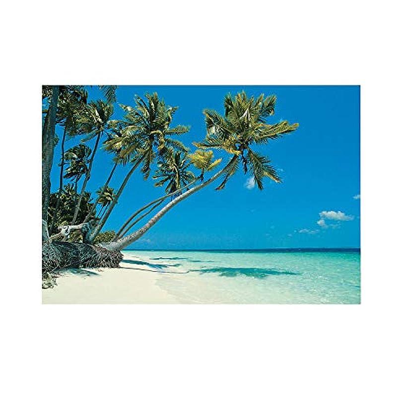 Fun Express - Tropical Beach Backdrop Banner (3pc) for Party - Party Decor - Wall Decor - Preprinted Backdrops - Party - 3 Pieces
