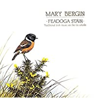 Feadoga Stain: Traditional Irish Music on the Tin Whistle by MARY BERGIN (1994-02-01)