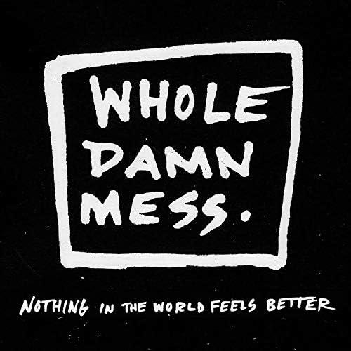 Whole Damn Mess