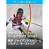 アルペンスキー FIS ワールドカップ 20/21 男子 ジャイアントスラローム ゾルデン/オーストリア