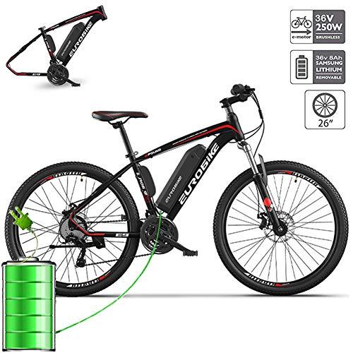 YMWD E Bike Elektrofahrräder 36V 8A/10AH/14AH Lithium Batterie Mountainbike Mit 250W Bürstenlosem Motor Doppelscheibenbremse Elektrofahrräder Mit 27-Gang Nabenschaltung,One Wheel,8 AH