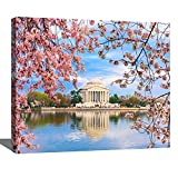 DIY Digital Oil Painting Set Washington dc in Spring Cherry Blossoms Stock Pictures Royalty Free Paint by Numbers Kits for Adult Beginner Children Wooden Frame Art Craft for Home Wall Decor-16x20'