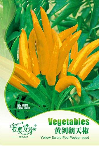 20pcs Paquet original chili chaud sauvage Pod Jaune poivre Graines de légumes Graines