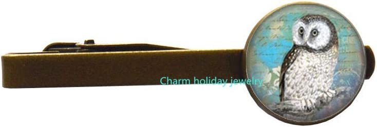 Owl Jewelry Tie Luxury Pin OFFicial shop Wearable Art Teal Clip C
