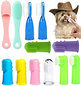 Best toothbrush for large dogs