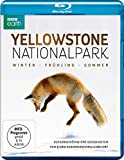 Yellowstone Nationalpark - Winter - Frühling - Sommer (BBC Earth) [Blu-ray]