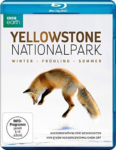 Yellowstone Nationalpark - Winter - Frühling - Sommer (BBC Earth) [Blu-ray]