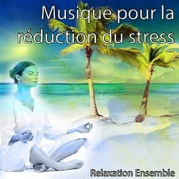 Musique pour la réduction du stress