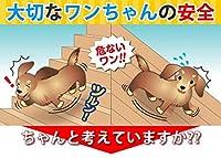 わんわんスベラン LS小中型犬用 お手軽セット(500ml・トレイ・コテバケ付き)