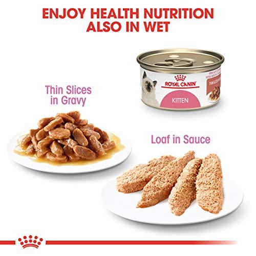 Royal Canin Feline Health Nutrition Kitten Dry Cat Food, 15-Pound