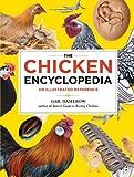 Chicken Breeds - Best Reviews Guide