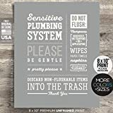 """*UNFRAMED* 8x10"""" Print Cute Do not Flush Bathroom Sign Septic System Sensitive Plumbing No Feminine Sanitary Products Tampons Decor Office airbnb Rustic Farmhouse Modern Disposal Bags Toilet Paper Art"""