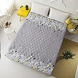 NHhuai Matratzen-Bett-Schoner mit Spannumrandung | Betten und Wasserbetten geeignet EIN einziger...