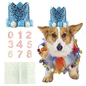 Coomour Dog Birthday Collar Pet Tutu Costume Funny Pet with Birthday Hat for Cat Puppy Party Supplies