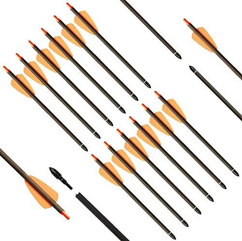 DZGN - Flechas De Perno De Ballesta De 8/16 Pulgadas para Tiro con Arco, Flechas De Ballesta De Carbono con Punta De Flecha Reemplazada, Flechas De Caza para Tiro con Ballesta, Caza,8 Inch,60