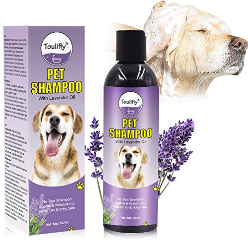 Best Dog Allergy Shampoos